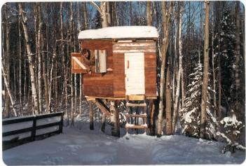 Legehuset som jeg byggede i den kolde vinter