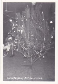 Juletræ fra Camp Elisabeth