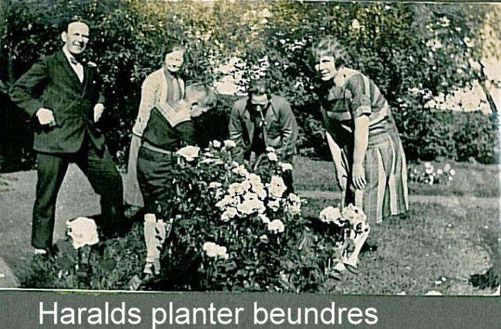 Harald planter beundres