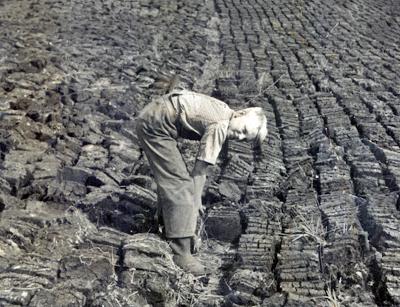 volstruo mose 1940 b