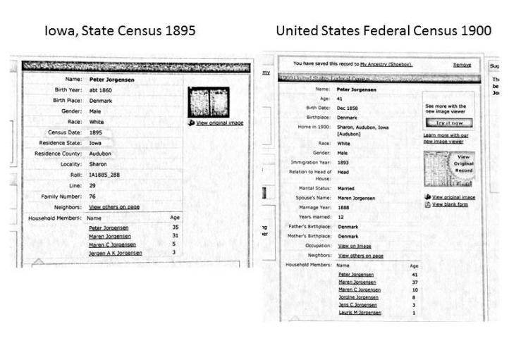 Census 1895 og 1900