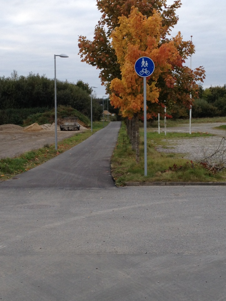 cykelsti-1