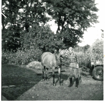 Bent og Musse Hartins gamle hest