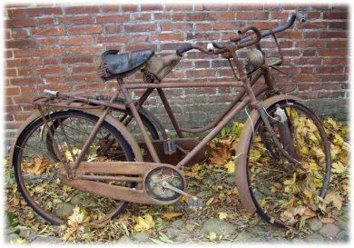 raeverod-cykler