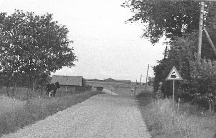 Vogterhus 11 Nyrup-9