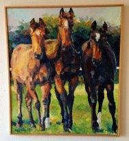 Nysgerrige heste