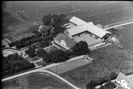 Hvedendal 1939