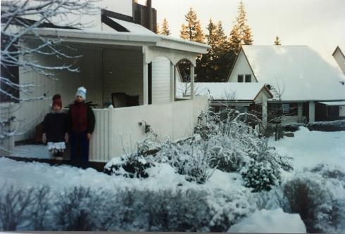 Storvreta i sne