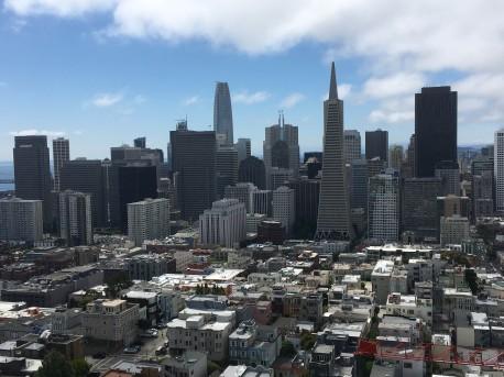 San Fransisco sky line