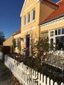 Skagen hus med roser