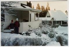 1991-Storvreta - i sne står urt og busk i skjul