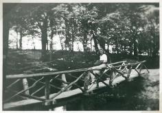Eva nyder skove stille ro på denne bro