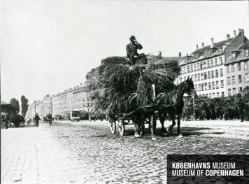 Halmtorvet ca_1900