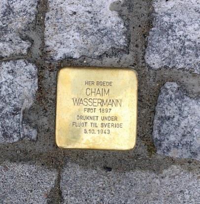 Snublesten Chaim Wassermann